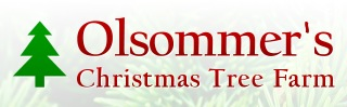Olsommer's Christmas Tree Farm